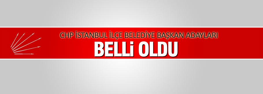 CHP İstanbul ilçe Belediye başkan adayları