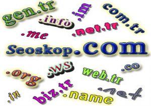 İnternet dünyasında kaç web sitesi var ?