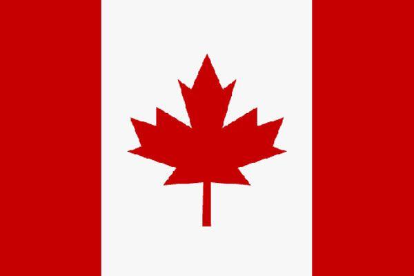 Kanada, bir süredir krizin yaşandığı ukrayna'ya 15 milyon dolar