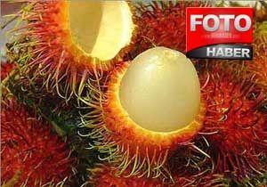Cinsel gücü artıran tropikal meyveler