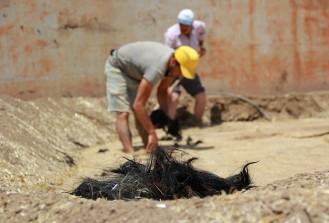 Cami kubbesi inşasında 1,5 ton keçi kılı kullanılacak