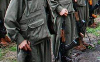 PKK'lı teröristler 3 kişiyi kaçırdı
