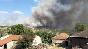 Edirne'de yangın yayılıyor