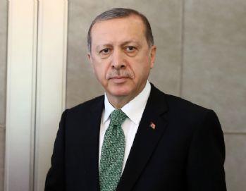 Erdoğan, Hollanda Başbakanı ile görüştü
