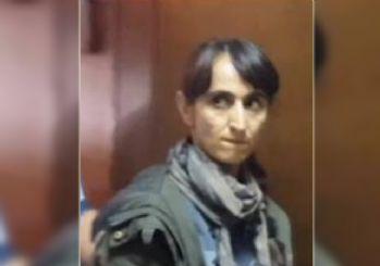 Romanya o teröristi serbest bıraktı
