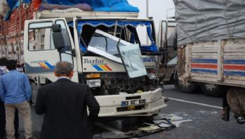 İki kamyon çarpıştı: 6 yaralı