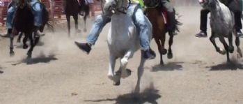 At yarışlarında korkunç kaza: Jokey hayatını kaybetti