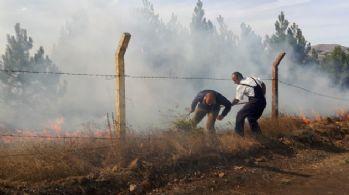 Orman yangınına vali müdahale etti!