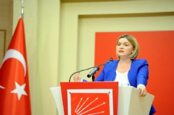 CHP'li Böke'den anayasa teklifi