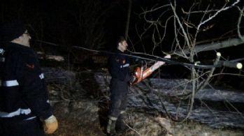 Bursa'da lodos ağaçları söktü, çatıları uçurdu