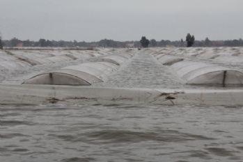 'Mersin derhal afet bölgesi ilan edilmeli'
