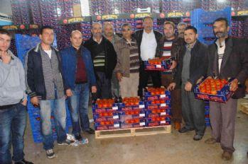 Domates ihracatçısı rotayı Kuzey Irak'a çevirdi