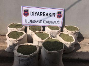 İki terörist etkisiz hale getirildi: 254 kilo esrar ele geçirildi