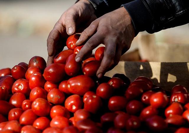 Rusya Tarım Bakanlığı'ndan Türkiye'ye: Sırtımızdan bıçaklandık