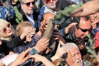 Bodrum'da fidan izdihamı