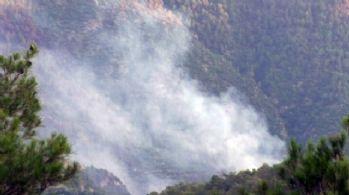 Denizli'de orman yangını: 5 hektarlık alan zarar gördü