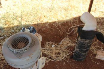Sıcak havayı topraktan geçirip soğuk hava üretiyor