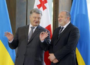'Uluslararası örgütler Rusya'ya baskı yapmalı'