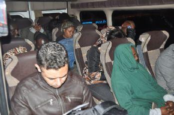 Hatay'da 50 göçmen yakalandı