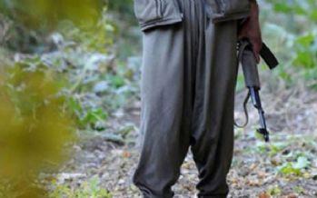 PKK'nın sözde Mazgirt gücü sorumlusu çıktı