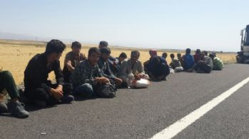 40 kişilik otobüste 150 kaçak: Bagajdan bile çıktılar