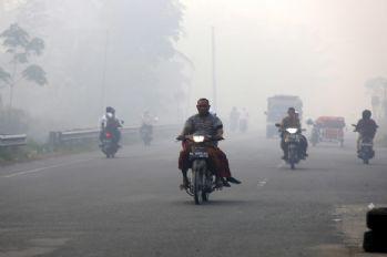 Orman yangını şehri etkiledi çok sayıda kişi hastanelik oldu