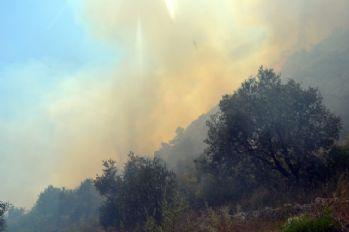 Tarihi kale yakınında orman yangını