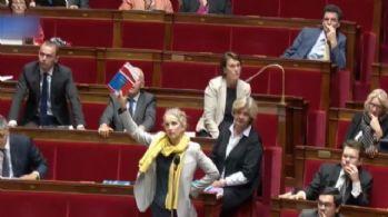 Fransa meclisinde yasa tasarısı tepkisi