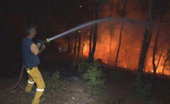 Bayındır'da yangın sürüyor