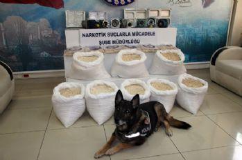 Hatay'da 13 milyon liralık uyuşturucu operasyonu