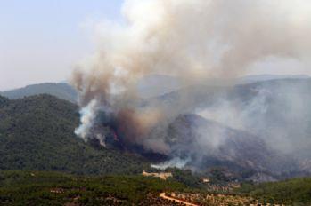 Bayındır'daki yangın kısmen kontrol altına alındı