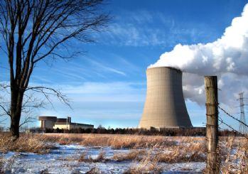 Rusya'dan Akkuyu Nükleer Santrali açıklaması