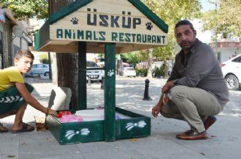Bu mini restoran sokak hayvanları için