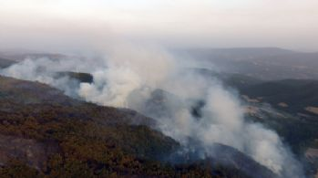 25 hektar alan kül oldu