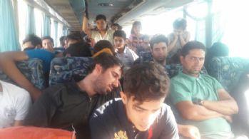 Bir otobüste tam 96 göçmen !