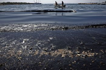 Sahil şeridinde petrol tabakası oluştu