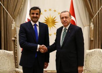 Erdoğan ve El Sani Körfez'de yaşanan krizi ele aldı