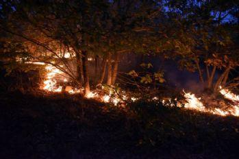 Eskişehir'de 45 hektarlık alan zarar gördü