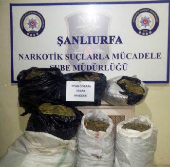 Şanlıurfa'da 77 kilo esrar ele geçirildi