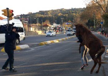 Show TV muhabiri Özge Mayetin'e at saldırdı!