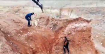 Maden işçileri çukurda mahsur kalan köpeği kurtardı