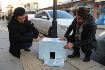 Atık malzemelerden sokak hayvanlarına ev