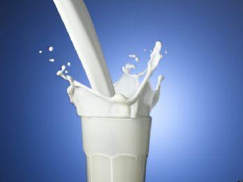 Ekim ayı süt ve süt ürünleri üretimi istatistikleri açıklandı