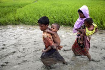 'Arakan krizinden Myanmar ordusu sorumlu'