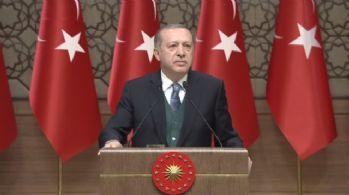 Erdoğan'dan BAE'li bakana: Bu neyin şımarıklığıdır