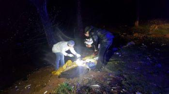 İstanbul'da ormanlık alanda erkek cesedi bulundu