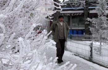 Sibirya soğukları Göle'yi esir aldı