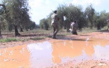 ÖSO, Afrin'e ilerleyişini sürdürüyor