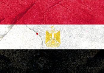 Mısır: Türkiye'nin Afrin'deki eylemleri Ermeni 'soykırımını' andırıyor