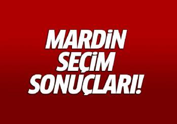 Mardin seçim sonuçları milletvekili genel seçim sonuçları 24 haziran 2018